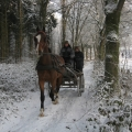 Winterse trainingen